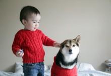 小孩玩伴少,养条狗对小孩的交流很有好处