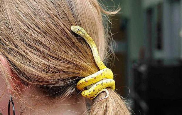 另类逼真创新  充满邪恶的蛇形头饰